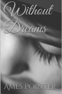 Bargain eBook Hunter: We Hunt for FREE & Bargain eBooks So You Don't Have To! -- A HotZippy Website: Today's Readers for Tomorrow's Bestsellers! © -- Bargain eBook Hunter proudly presents: Without Dreams by Ames Pointer!