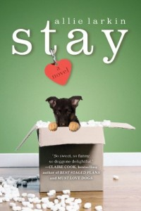 Bargain eBook Hunter: We Hunt for FREE & Bargain eBooks So You Don't Have To! -- A HotZippy Website: Today's Readers for Tomorrow's Bestsellers! © -- Bargain eBook Hunter proudly presents: Stay: A Novel by Allie Larkin!
