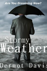 Bargain eBook Hunter: We Hunt for FREE & Bargain eBooks So You Don't Have To! -- A HotZippy Website: Today's Readers for Tomorrow's Bestsellers! © -- Bargain eBook Hunter proudly presents: Stormy Weather: A Novel by Dermot Davis!
