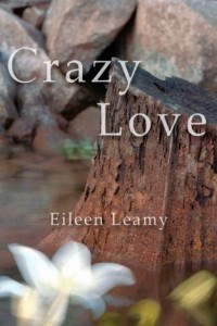 Bargain eBook Hunter: We Hunt for FREE & Bargain eBooks So You Don't Have To! -- A HotZippy Website: Today's Readers for Tomorrow's Bestsellers! © -- Bargain eBook Hunter proudly presents: Crazy Love by Eileen Leamy!