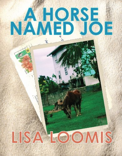 Bargain eBook Hunter: We Hunt for Free & Bargain eBooks So You Don't Have To! -- A HotZippy Website: Today's Readers for Tomorrow's Bestsellers! © -- Bargain eBook Hunter proudly presents: A Horse Named Joe by Lisa Loomis!