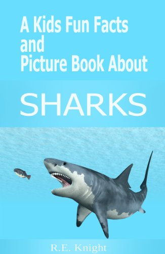 Bargain eBook Hunter: We Hunt for Free & Bargain eBooks So You Don't Have To! -- A HotZippy Website: Today's Readers for Tomorrow's Bestsellers! © -- Bargain eBook Hunter proudly presents: A Kid's Fun Facts and Picture Book about SHARKS (Kids Fun Facts and Picture Book Series) by R. E. Knight!