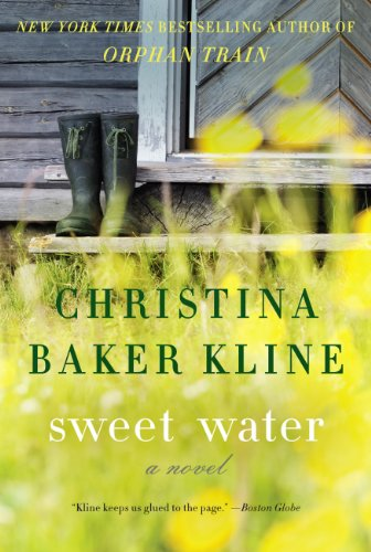 Bargain eBook Hunter: We Hunt for Free & Bargain eBooks So You Don't Have To! -- A HotZippy Website: Today's Readers for Tomorrow's Bestsellers! © -- Bargain eBook Hunter proudly presents: Sweet Water: A Novel by Christina Baker Kline!
