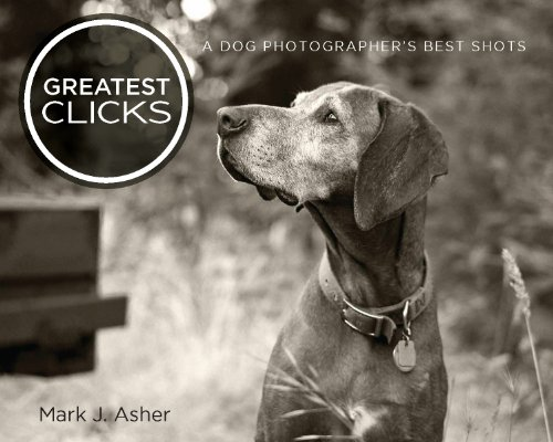 Bargain eBook Hunter: We Hunt for Free & Bargain eBooks So You Don't Have To! -- A HotZippy Website: Today's Readers for Tomorrow's Bestsellers! © -- Bargain eBook Hunter proudly presents: Greatest Clicks: A Dog Photographer's Best Shots by Mark J. Asher!