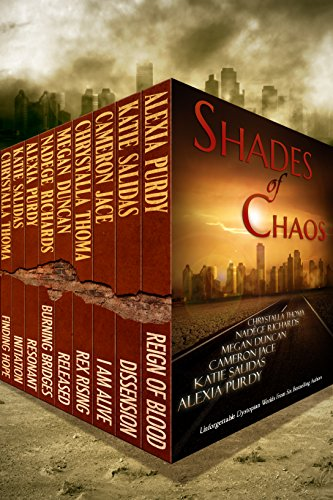 Bargain eBook Hunter: We Hunt for Free & Bargain eBooks So You Don't Have To! -- A HotZippy Website: Today's Readers for Tomorrow's Bestsellers! © -- Bargain eBook Hunter proudly presents: Shades of Chaos by Katie Salidas!