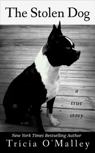 The Stolen Dog by Tricia O'Malley