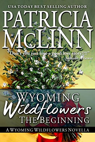 Wyoming Wildflowers: The Beginning (A Western Romance Novella) by Patricia McLinn