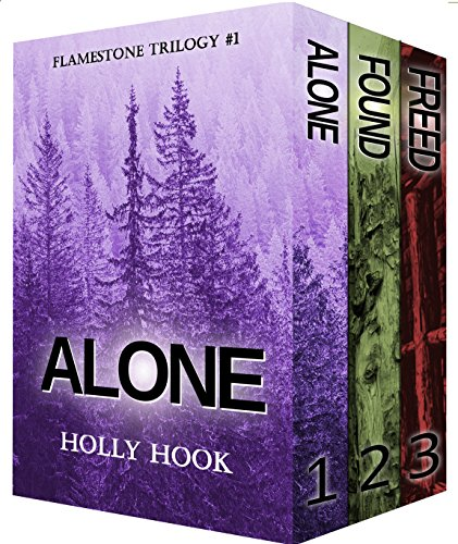 The Flamestone Trilogy Box Set (Books 1-3) by Holly Hook