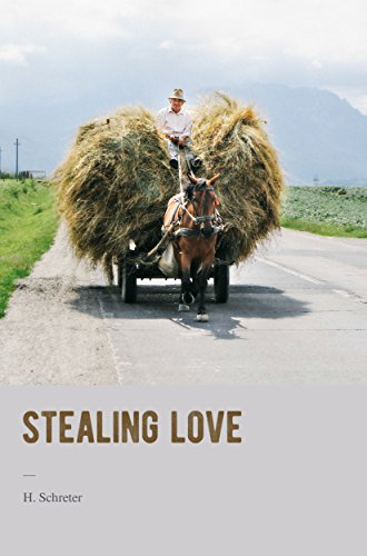 Stealing Love by H. Schreter