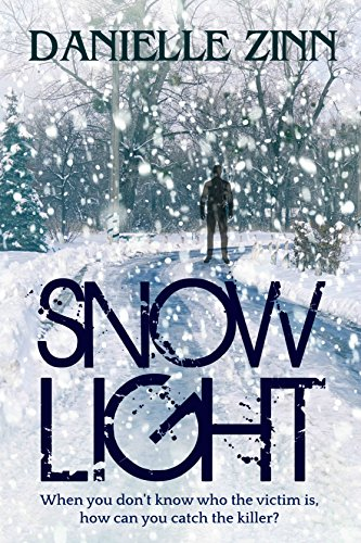 Snow Light by Danielle Zinn